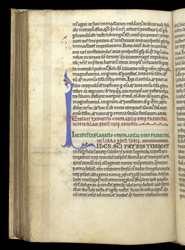 Decorated Initial, In Bede's 'Commentary On The Catholic Epistles' And 'Commentary On Tobit' f.86v